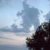 Небесный великан :: Павел Фридман