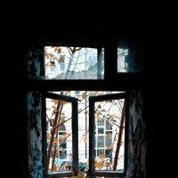 окно явно не в париж :: Николай Шлыков