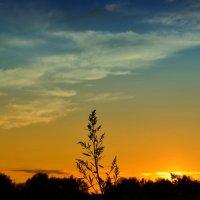 Опаздал на закат :: Глеб Якимов
