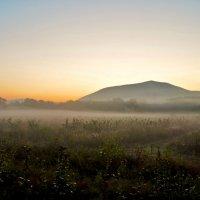 Утренний туман :: Константин Лабудя