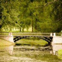 зеленое настроение-2 :: Анастасия Nast