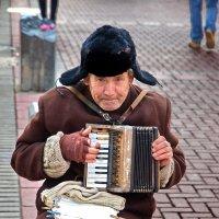 Играй гармонь... :: Владимир Ессенкин