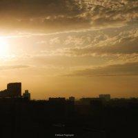 morning glory... :: Энрике Погосян