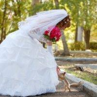 Жених признается в любви :: Владимир Маковцев