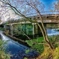 Мост :: Сергей Роутер