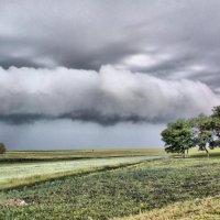 Тучи мглою небо кроют :: Степан Дмитриев
