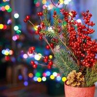 Новогоднее настроение :: Yury Novikov