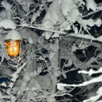 желтый фонарь :: Сергей Леонтьев