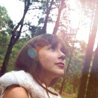 сказка в лесу :: Irina Petrova
