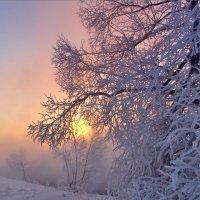 Зимние кружева... :: Юрий Клюшкин
