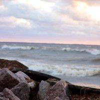 Прибрежные камни :: Максим Зорев
