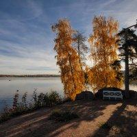Осень в Монрепо /3 :: Евгений Плетнев