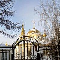 Вознесенский кафедральный собор :: Валентина Родина
