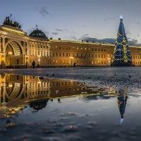 Главная елка Санкт-Петербурга :: Valeriy Piterskiy