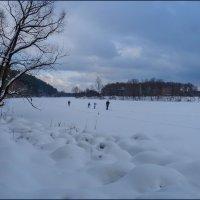 Зимний маршрут... :: Наталья Rosenwasser