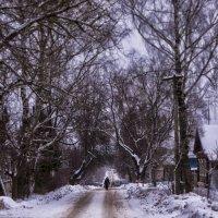 Сельская дорога :: Алексей Соминский