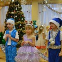 Ты чего, Дедушка мороз?? :: Вероника Большакова