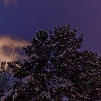 Пушистый снег :: Александр Устюгов