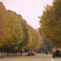 парк :: Дмитрий Потапов