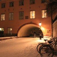 зимой в уппсале :: liudmila drake