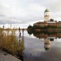 Выборгский замок. :: сергей лебедев