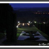 Долина Роз ночью :: Ильяс Салпагаров