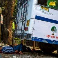 Обеденный перерыв индийского водителя :: Марина Семенкова