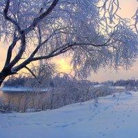 Зимний вечер, который начинается днём...! :: Юрий Клюшкин