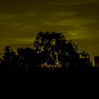 закат в Петах Тикве :: Shmual Hava Retro