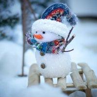 Мини-снеговик :: Александр Кулешов