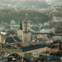 Львовская ратуша :: Svetlana Bohomol