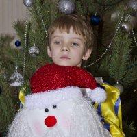 В ожидании Деда Мороза :: Сергей