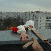 Дед Мороз :: zmicier kazakevicz
