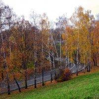 Дорога осенью :: dimakoshelev Кошелев