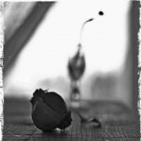 Чесночное настроение :: Ольга Мальцева