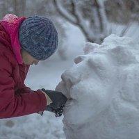 Лепим снежного льва :: Василий Игумнов