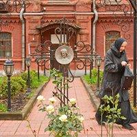Красное село. :: Геннадий Александрович