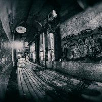 Свет во мраке ночи :: Алексей Соминский