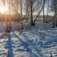 первый снег,середина декабря,Сибирь :) :: Александр Иванов