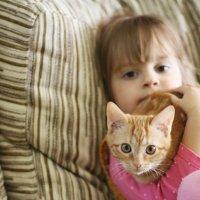котята :: Tatiana Florinzza