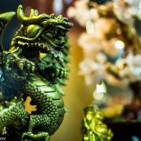 Gold Dragon :: Станислав Орлов