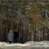 Прощай зима! :: Владимир Шошин
