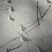 Падал прошлогодний снег 04 :: sv.kaschuk