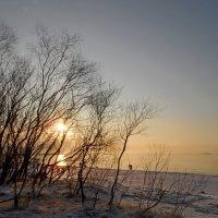 Январь. Морской закат в Солнечном :: Юрий Цыплятников