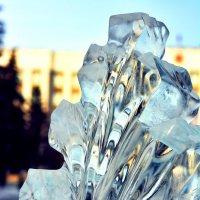 Зимняя ветвь :: юрий Амосов