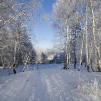 Зима на Вишневке. :: Сергей Адигамов
