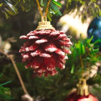 Новогоднее фото :: Любовь Клименко
