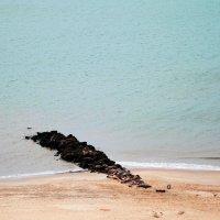 Ocean :: Мила Соловьева