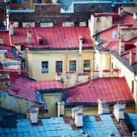 Крыши Питера :: Алексей Свирин