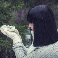 Птичка :: Алёна Новикова